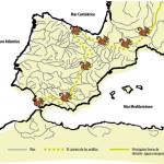 El Camino de las Ardillas / The Squirrels' Pathway