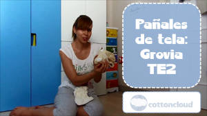 Pañales de tela: Grovia TE2 - Cloth diapers: Grovia AI2