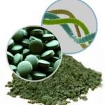 20 datos sobre la Espirulina – 20 facts about Spirulina